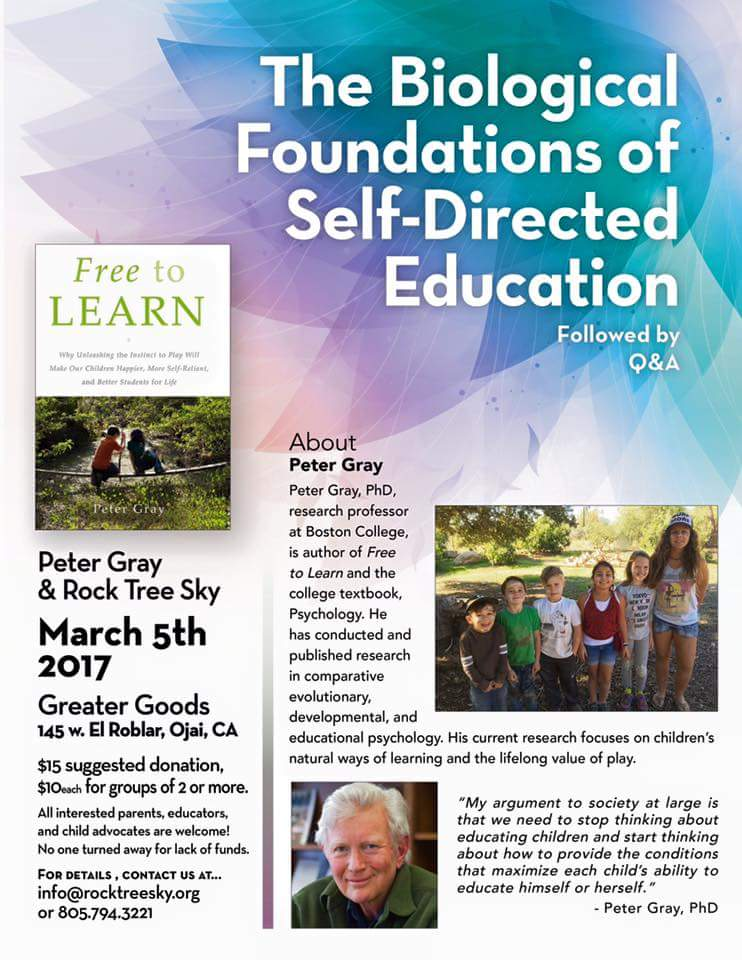 Self Directed Education
